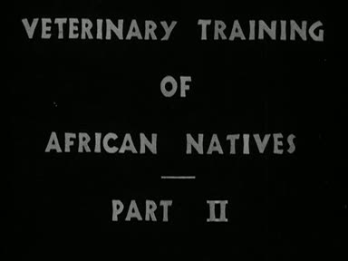 VETERINARY TRAINING OF AFRICAN NATIVES